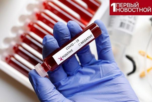 Люди, имеющие первую группу крови, меньше всего подвержены коронавирус! Специалисты сравнили показатели зараженных, после чего стало ясно, что самый низкий процент заболевших среди людей,