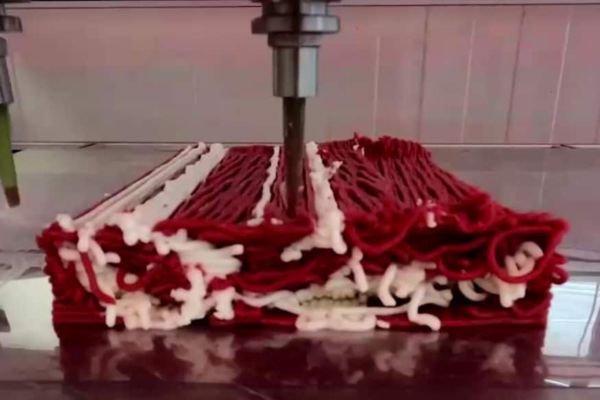 Стейк на растительной основе создан в Израиле при помощи 3D-принтера