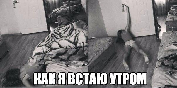 Картинка а вы утром так же просыпаетесь