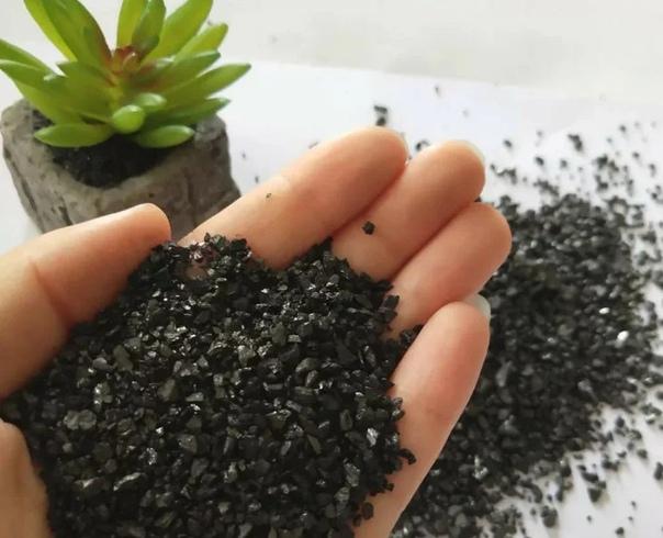 Как я использую каждый год на своём огороде активированный уголь и давно забыла, что такое плесень и грибок