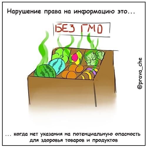 Право на доступ к информации, изображение №8
