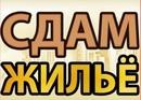 Объявление от Vasilisa - фото №1